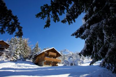 Luxury chalets in Meribel, chalet Veronica